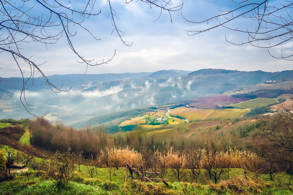 Croatia Motovun - The forest where truffles are found Best Places to Visit in Istria